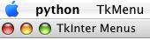 Python Tkinter Window